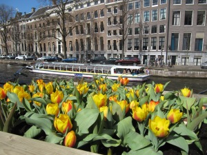 Tulips and canals